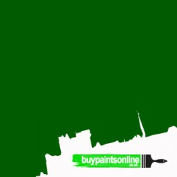 forest pine